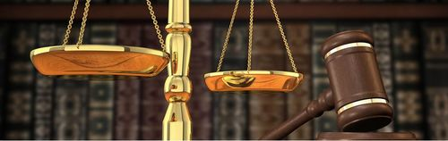 Стань квалифицированным юристом за один год: идет набор на ...   158x500